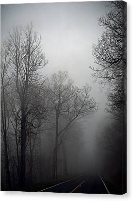 Skyline Drive In Fog Canvas Print by Greg Reed