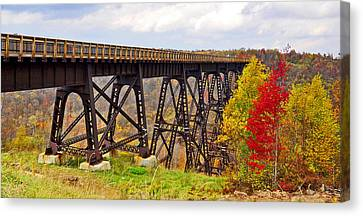 Skywalk Kinzua Bridge State Park Mckean County Pennsylvania Canvas Print