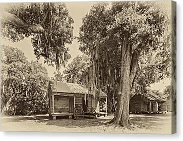 Evergreen Plantation Canvas Print - Slave Quarters Sepia by Steve Harrington