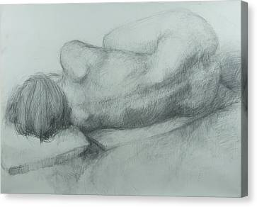 Sleep Canvas Print by Cynthia Harvey