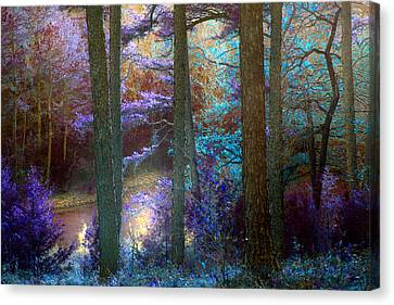 Sleep Walking Canvas Print by Nina Fosdick