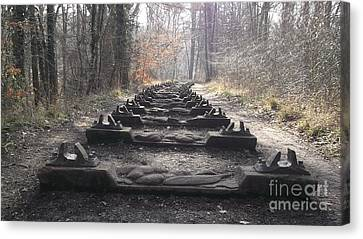 Sleepers In The Woods Canvas Print by John Williams