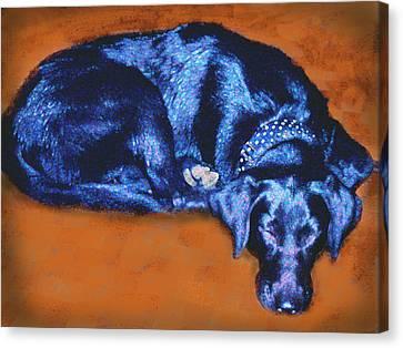 Sleeping Blue Dog Labrador Retriever Canvas Print by Ann Powell
