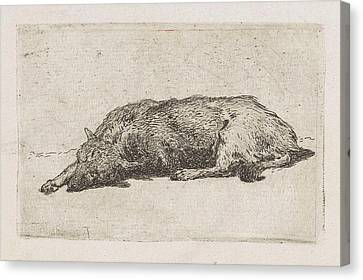 Sleeping Dog, Jan Weissenbruch Canvas Print by Artokoloro