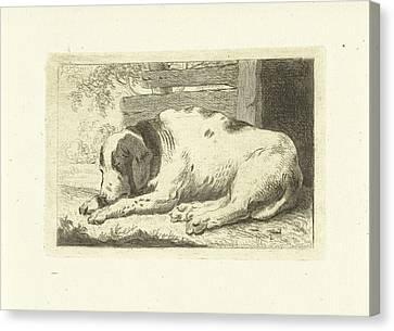 Sleeping Dog, Johannes Van Cuylenburgh Canvas Print by Artokoloro