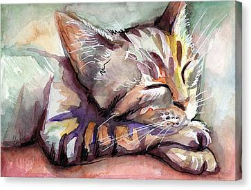 Watercolor Pet Portraits Canvas Print - Sleeping Kitten by Olga Shvartsur