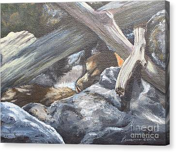 Canvas Print featuring the painting Sleeping Lion by Laurianna Taylor