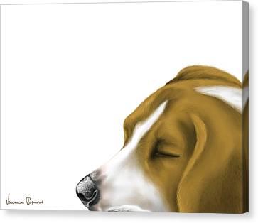 Sleeping Canvas Print by Veronica Minozzi