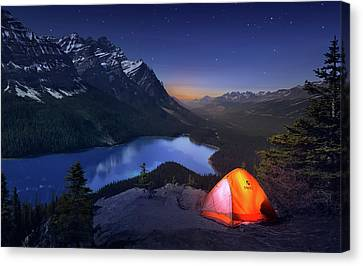 Sleeping With The Stars Canvas Print
