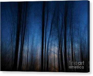 Sleepwalking... Canvas Print