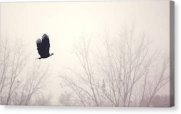 Slicing Through The Fog Canvas Print by Melanie Lankford Photography