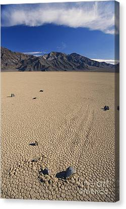 Sliding Rocks On Racetrack Playa Canvas Print