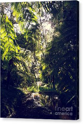 Canvas Print featuring the photograph Slight Tremble by Rushan Ruzaick