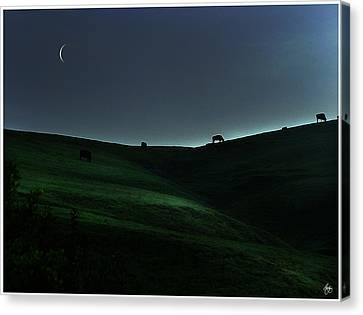 Sliver Of Light On The Pasture Canvas Print by Wayne King