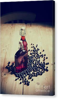 Sloe Gin Canvas Print by Tim Gainey