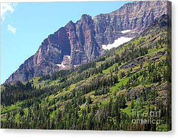 Sloping Mountain At Two Medicine Lake Canvas Print by Carol Groenen