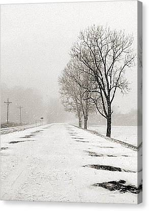 Slow Going II Canvas Print by Julie Dant