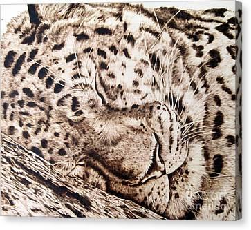Slumber Canvas Print by Paper Horses Jacquelynn Adamek