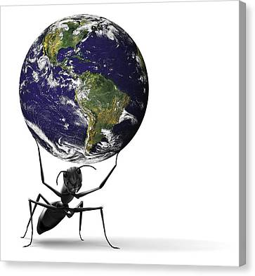 Small Ant Lifting Heavy Blue Earth Canvas Print by Dirk Ercken