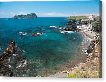 Small Bay And Islet Canvas Print by Gaspar Avila
