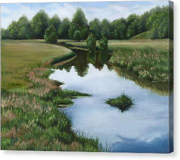 Small Creek Canvas Print