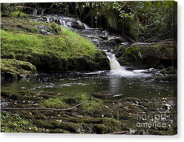 Small Falls On West Beaver Creek Canvas Print by Kathy McClure
