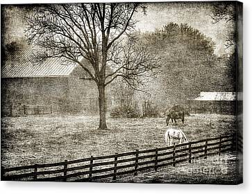 Small Farm In West Virginia Canvas Print by Dan Friend