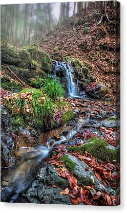 Canvas Print featuring the photograph Small Fog Waterfall by John Swartz
