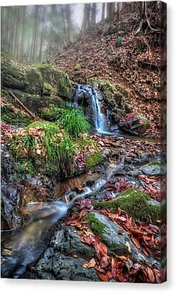 Small Fog Waterfall Canvas Print by John Swartz