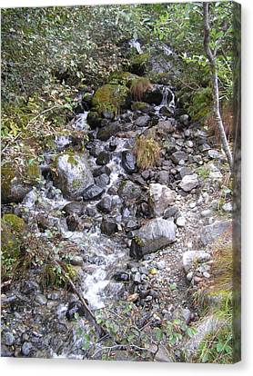Small Glacial Stream Canvas Print