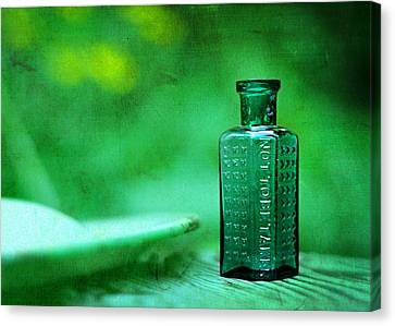 Small Green Poison Bottle Canvas Print by Rebecca Sherman