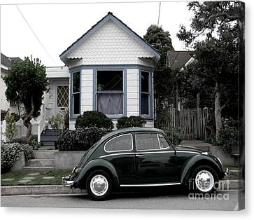 Small House With A Bug Canvas Print by James B Toy