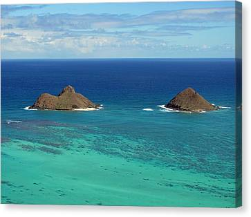 Small Islands Canvas Print by Laura Watts