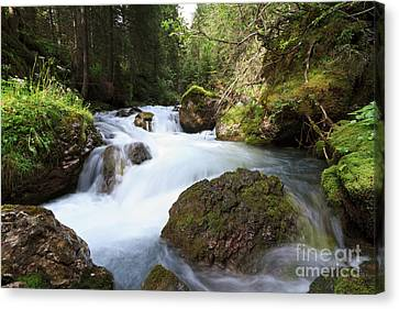 Canvas Print featuring the photograph Small Stream by Antonio Scarpi