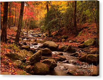 Canvas Print featuring the photograph Small Stream by Geraldine DeBoer