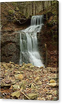 Small Tributary Falls To Heberly Run #1 Canvas Print