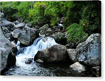Small Waterfall Canvas Print by Adam LeCroy
