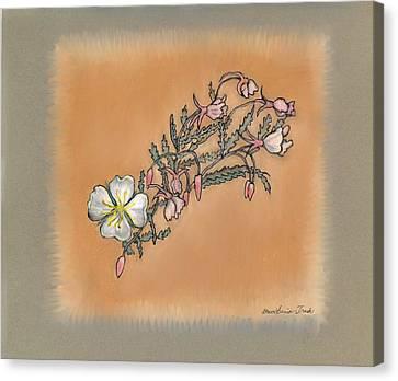 Small Wild Primrose Canvas Print