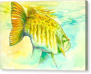 Smallie Patrol Canvas Print by Yusniel Santos
