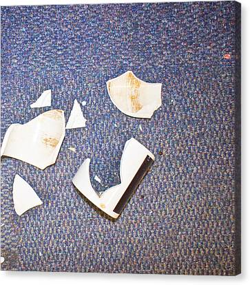 Smashed Cup Canvas Print by Tom Gowanlock
