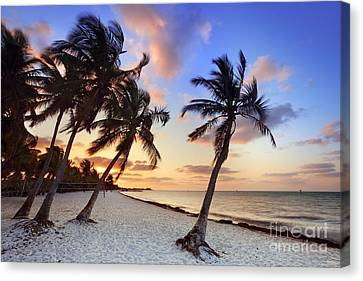 Smathers Beach 1 Canvas Print by Rod McLean