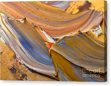 Smeared Paint Canvas Print by Louise Heusinkveld
