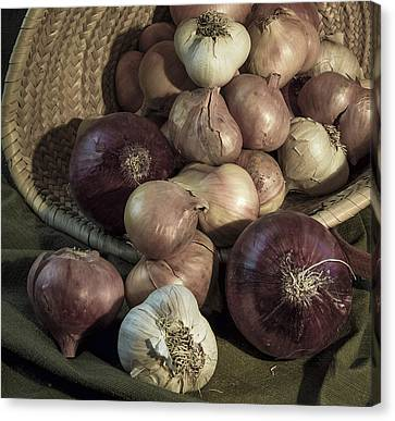 Smelly Bounty Canvas Print by Jean Noren