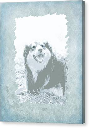 Smile Canvas Print by Ann Powell