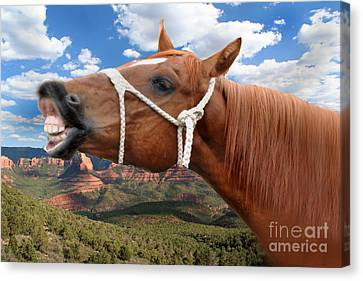 Smile When You Say That Canvas Print by Gary Keesler
