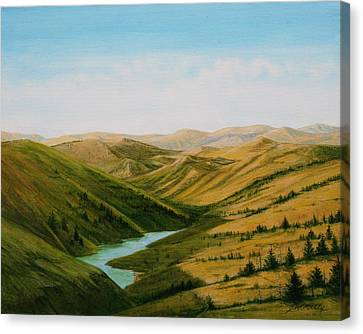 Smiley Canyon Wash Canvas Print by J W Kelly