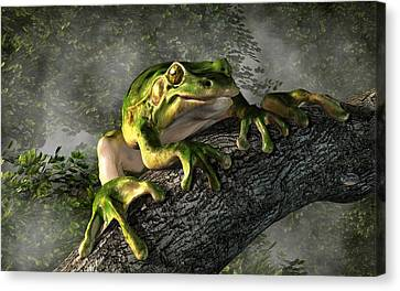Smiling Frog Canvas Print by Daniel Eskridge