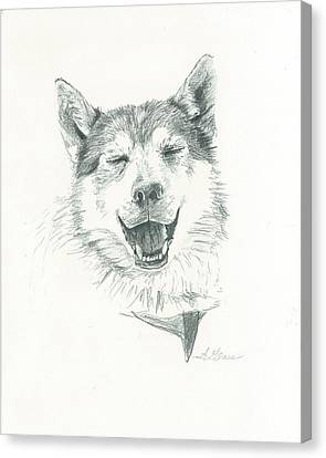 Smiling Husky Canvas Print by Sarah Glass