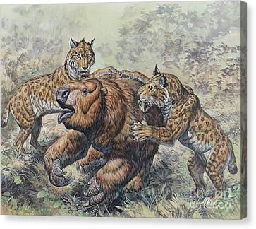 Smilodon Dirk-toothed Cats Attacking Canvas Print