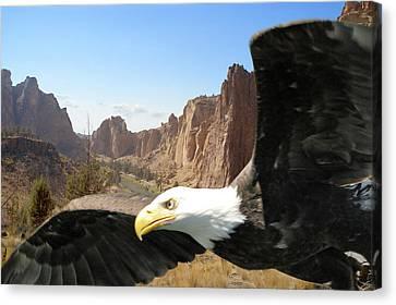 Smith Rocks Eagle Canvas Print